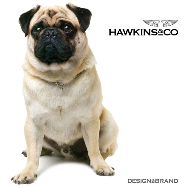 Hawkins&Co | Design&Brand